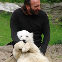 Polar Bear arctic hug cub love